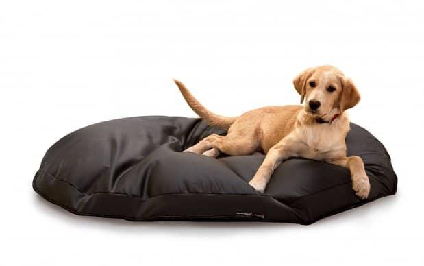 hundesitzsack expandpouf ring sitzsack f r hunde online bestellen bei wohnstation. Black Bedroom Furniture Sets. Home Design Ideas